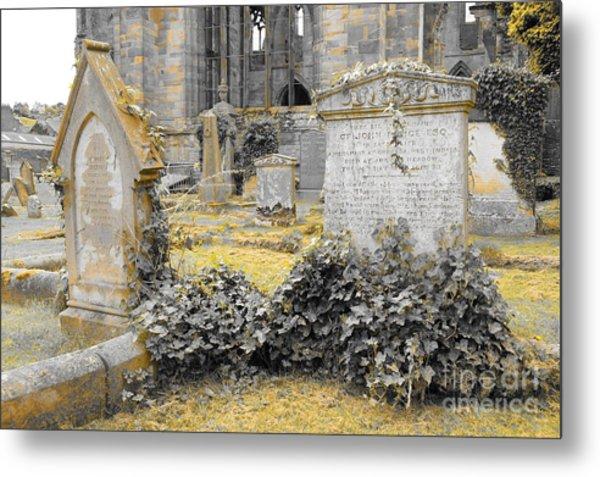Oblivion. Ivy And Golden Lichen Metal Print