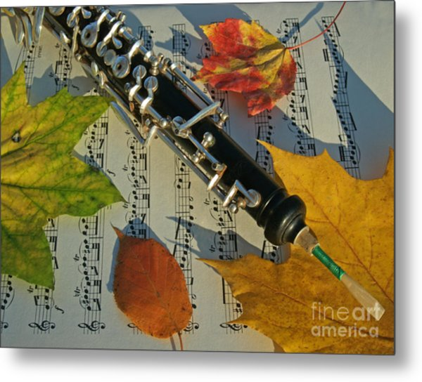 Oboe And Sheet Music On Autumn Afternoon Metal Print