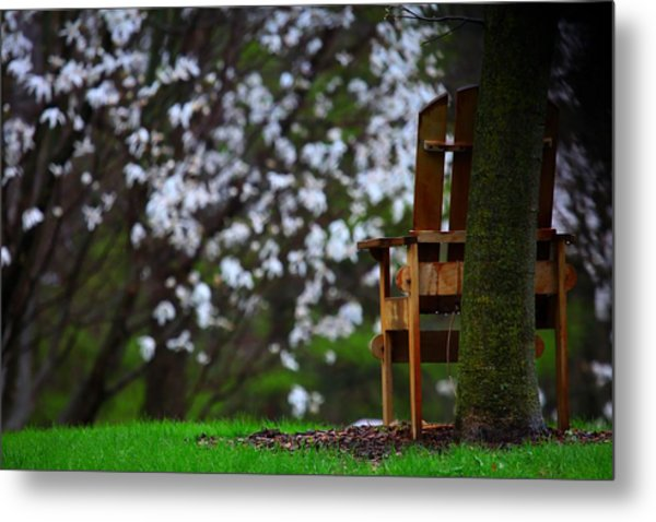 Observation Chair Metal Print by David Christiansen
