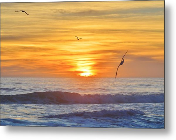 Coquina Beach Metal Print