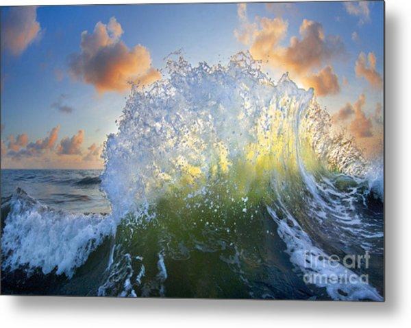 Ocean Bouquet  -  Part 3 Of 3 Metal Print