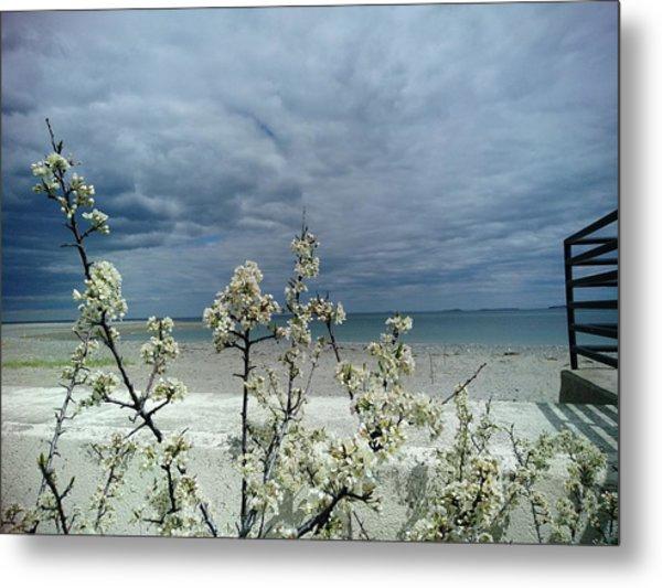 Ocean Spring Metal Print