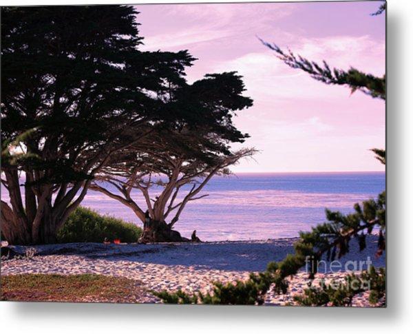 Ocean Views From Carmel Beach  Metal Print