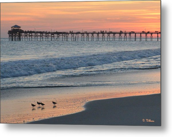 Oceanana Shorebirds Metal Print