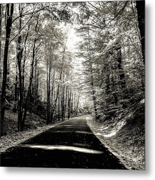 October Grayscale  Metal Print