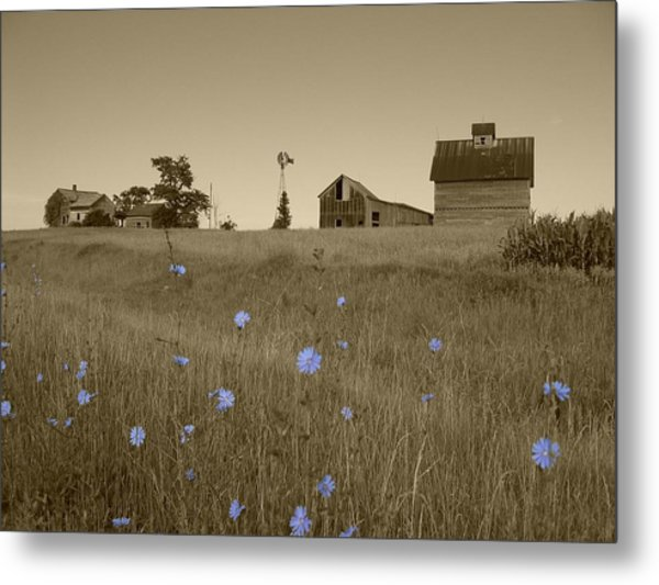 Metal Print featuring the photograph Odell Farm V by Dylan Punke