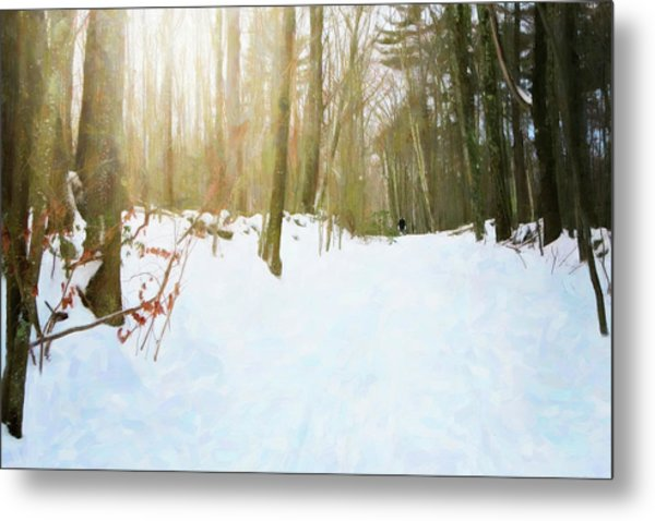 Metal Print featuring the digital art Off The Beaten Path by Sue Collura