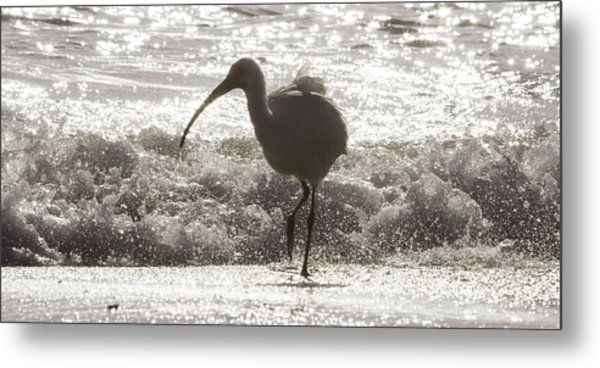 Oh Splash Me Cortez Beach Metal Print