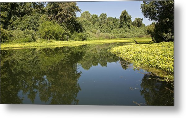 Oh The Calm Of It All Metal Print by Charlie Osborn