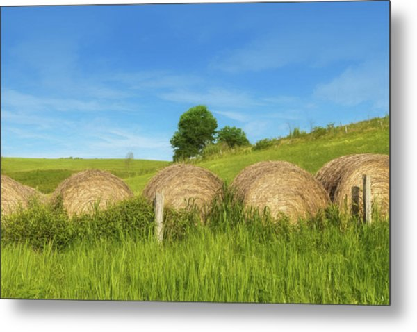 Ohio Landscape In Summer Metal Print