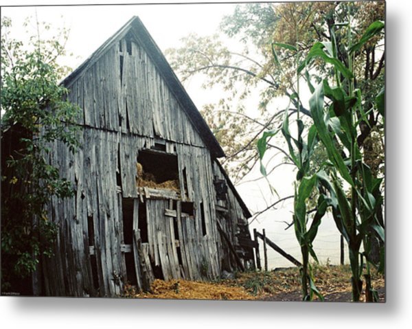 Old Barn In The Morning Mist Metal Print