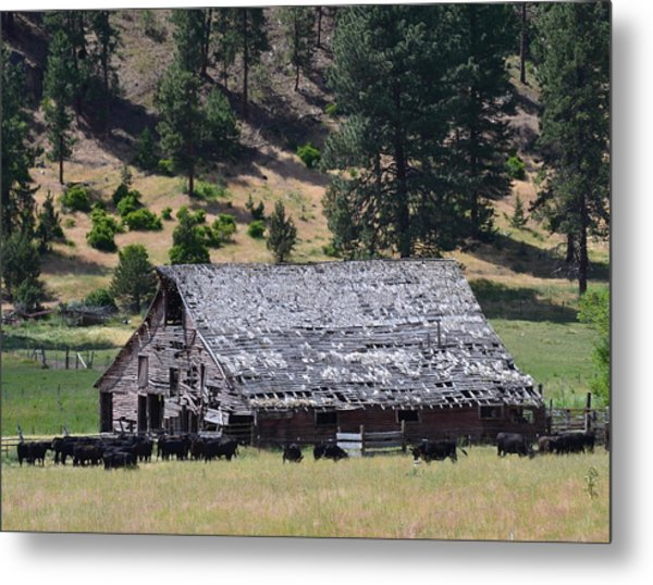 Old Barn Metal Print by Linda Larson