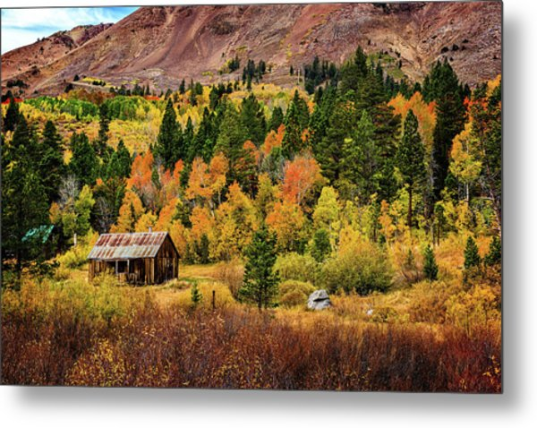 Old Cabin In Hope Valley Metal Print