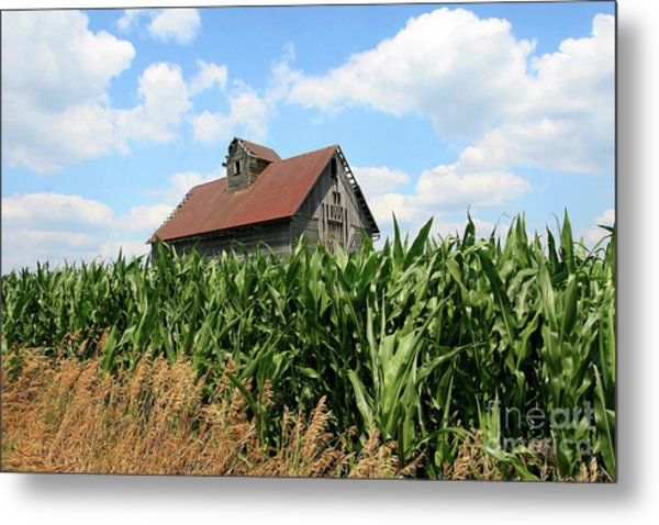 Old Corn Crib Metal Print