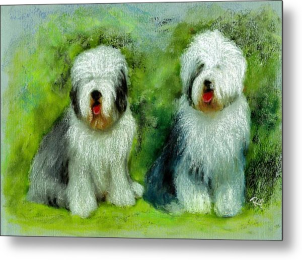 Old English Sheepdog Metal Print