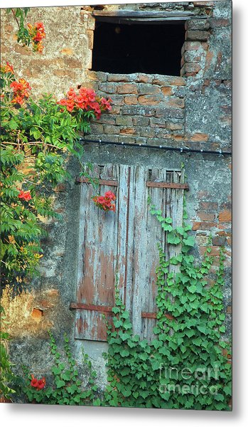 Old Farm Door Metal Print