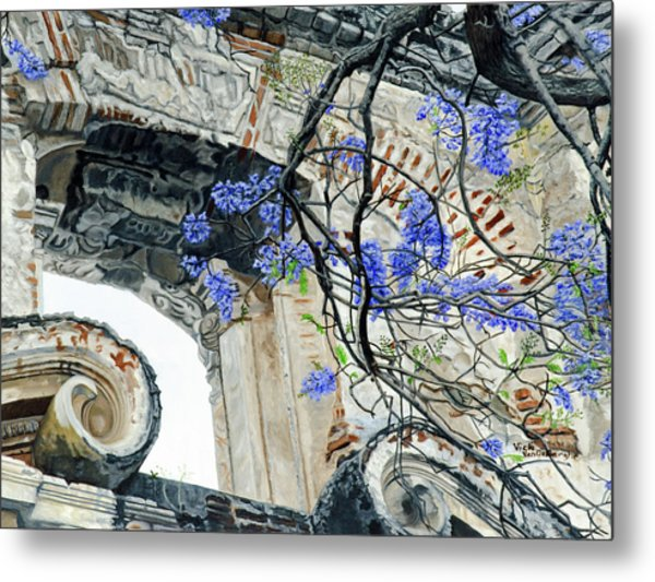 Old Growth Wisteria Metal Print