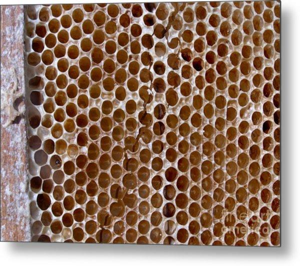 Old Honey Comb Bee Hive  Metal Print by Kathy Daxon