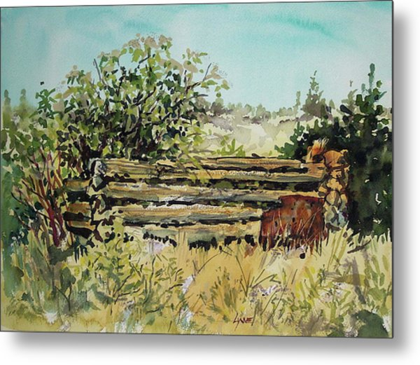 Old Log Shed Metal Print