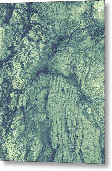 Old Man Tree Metal Print