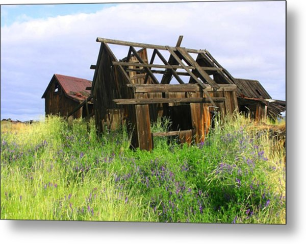 Old Shack At The Gorge Ba 3000 Metal Print by Mary Gaines