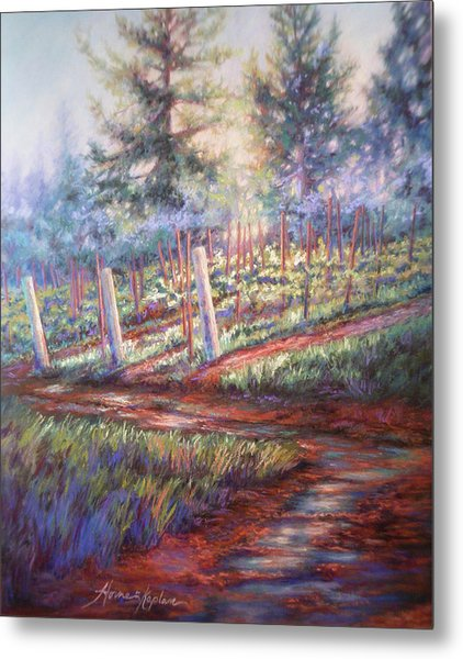 Old Vines And Fresh Rain Metal Print