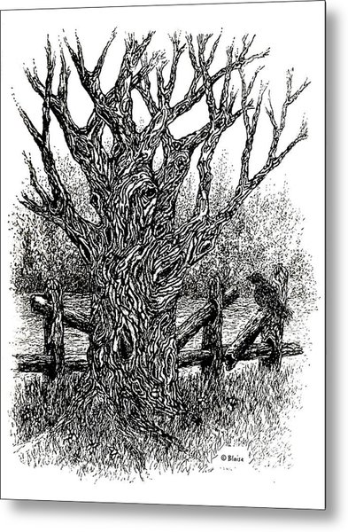 Old Wood And Hazy Days Metal Print