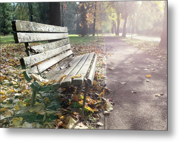 Rustic Wooden Bench During Late Autumn Season On Bright Day Metal Print