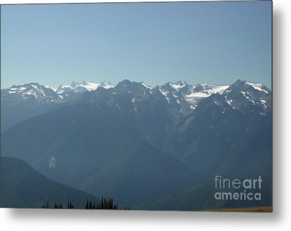 Olympics From Hurricane Ridge Metal Print