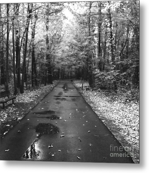 On A Drizzly Day Metal Print