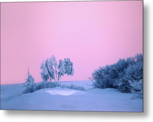 On A Magical Wintery Morning.... Metal Print