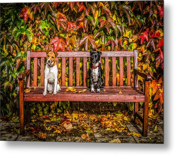 On The Bench Metal Print