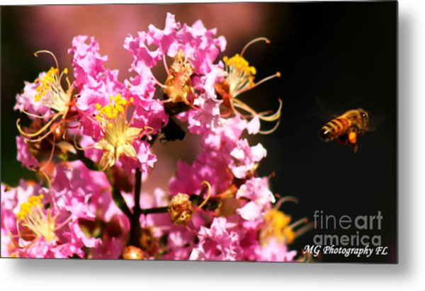On The Buzz Metal Print