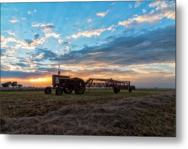 On The Farm Metal Print