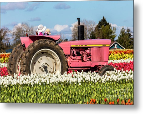 On The Field Of Beauty Metal Print