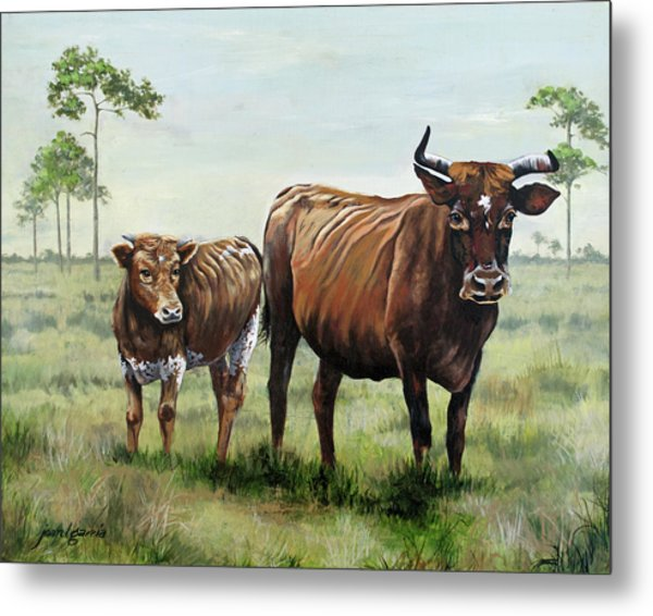 On The Florida Prairie Cracker Cattle Metal Print