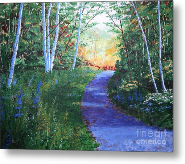 On The Path Metal Print