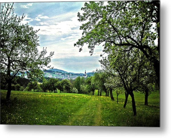 On The Way To Gramastetten ... Metal Print