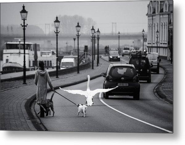 On The Wrong Side Of The Road Metal Print