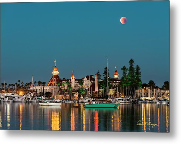 Metal Print featuring the photograph Once In A Lifetime by Dan McGeorge