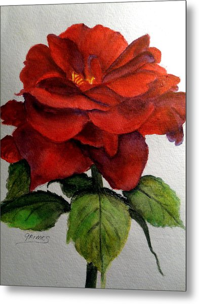 One Beautiful Rose Metal Print