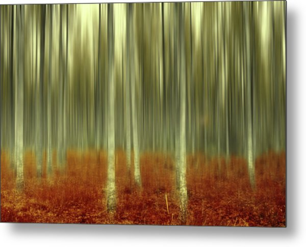One Day Like This Metal Print