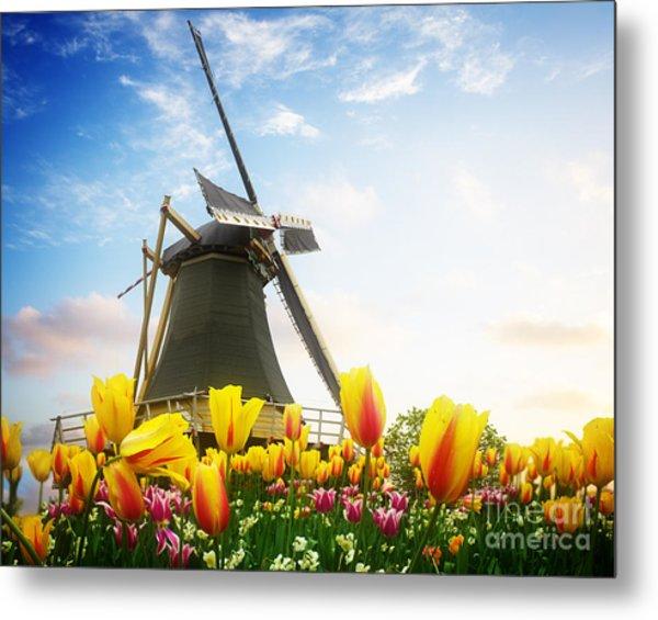 One Dutch Windmill Over  Tulips Metal Print
