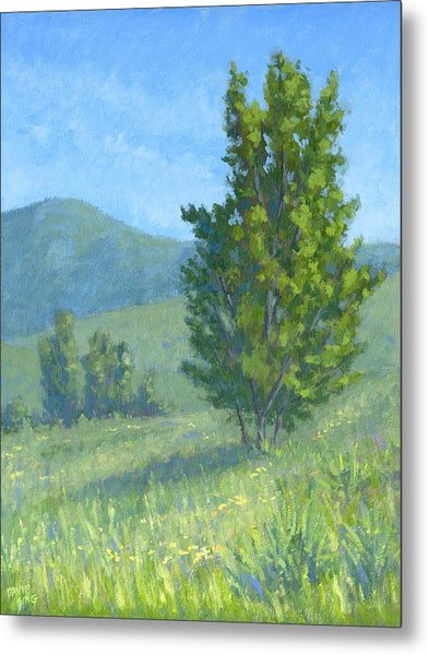 One Fine Spring Day Metal Print