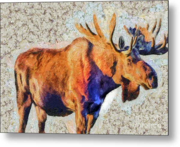 One Handsome Moose Metal Print