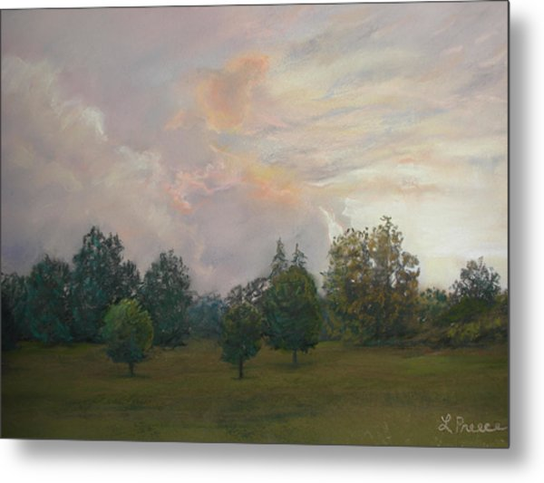 One Magnificent Evening Metal Print by Linda Preece
