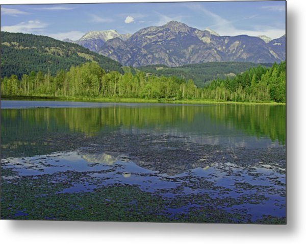 One Mile Lake Reflections 1a Metal Print by Walter Fahmy