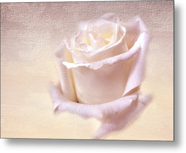 One Rose Is Enough For The Dawn Metal Print