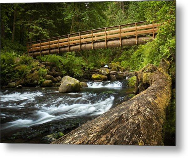 Oneonta Creek Crossing Metal Print