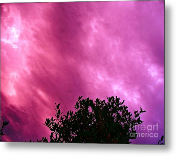 Only Chance To See This Metal Print by Chuck Taylor